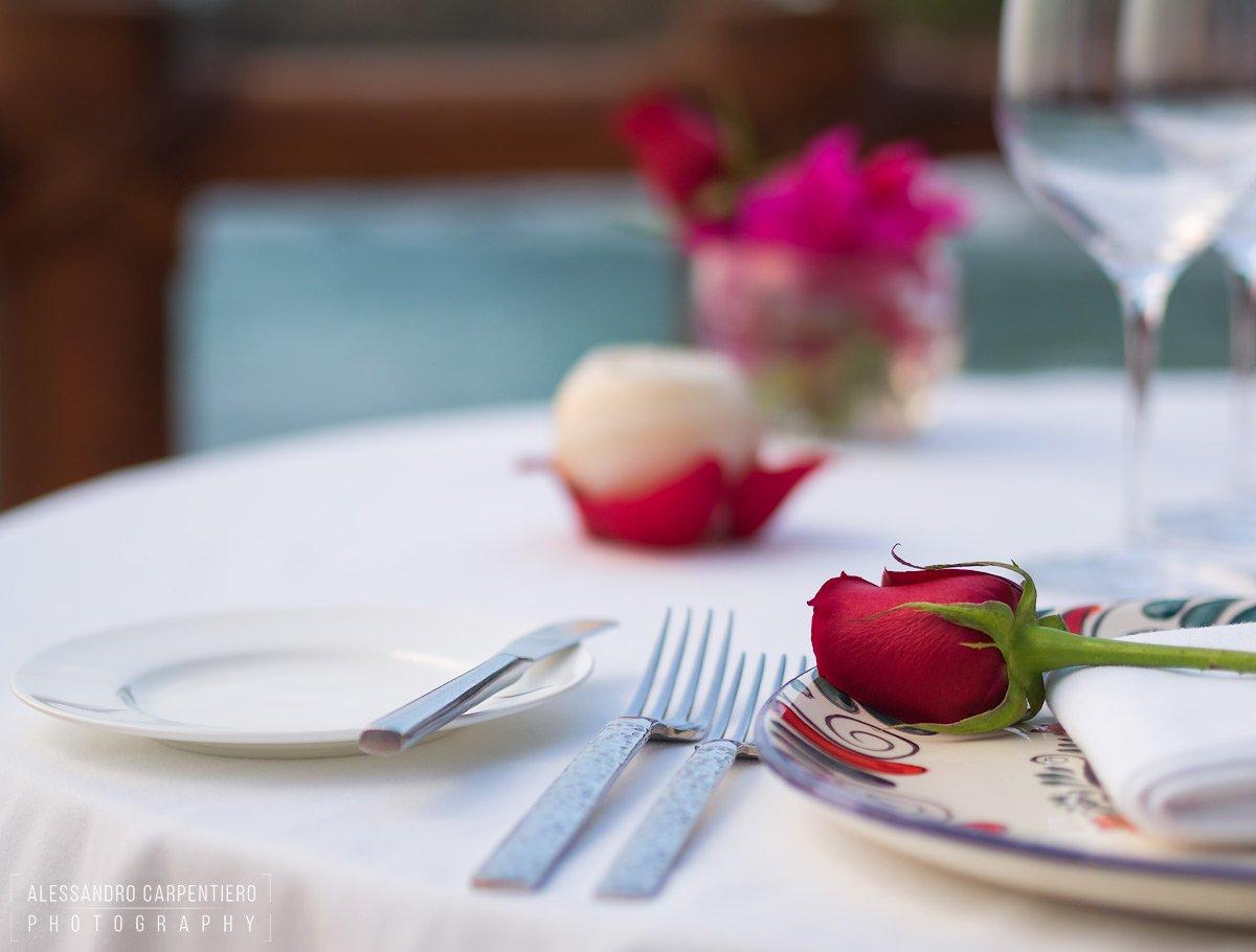 cena romantica con rosa